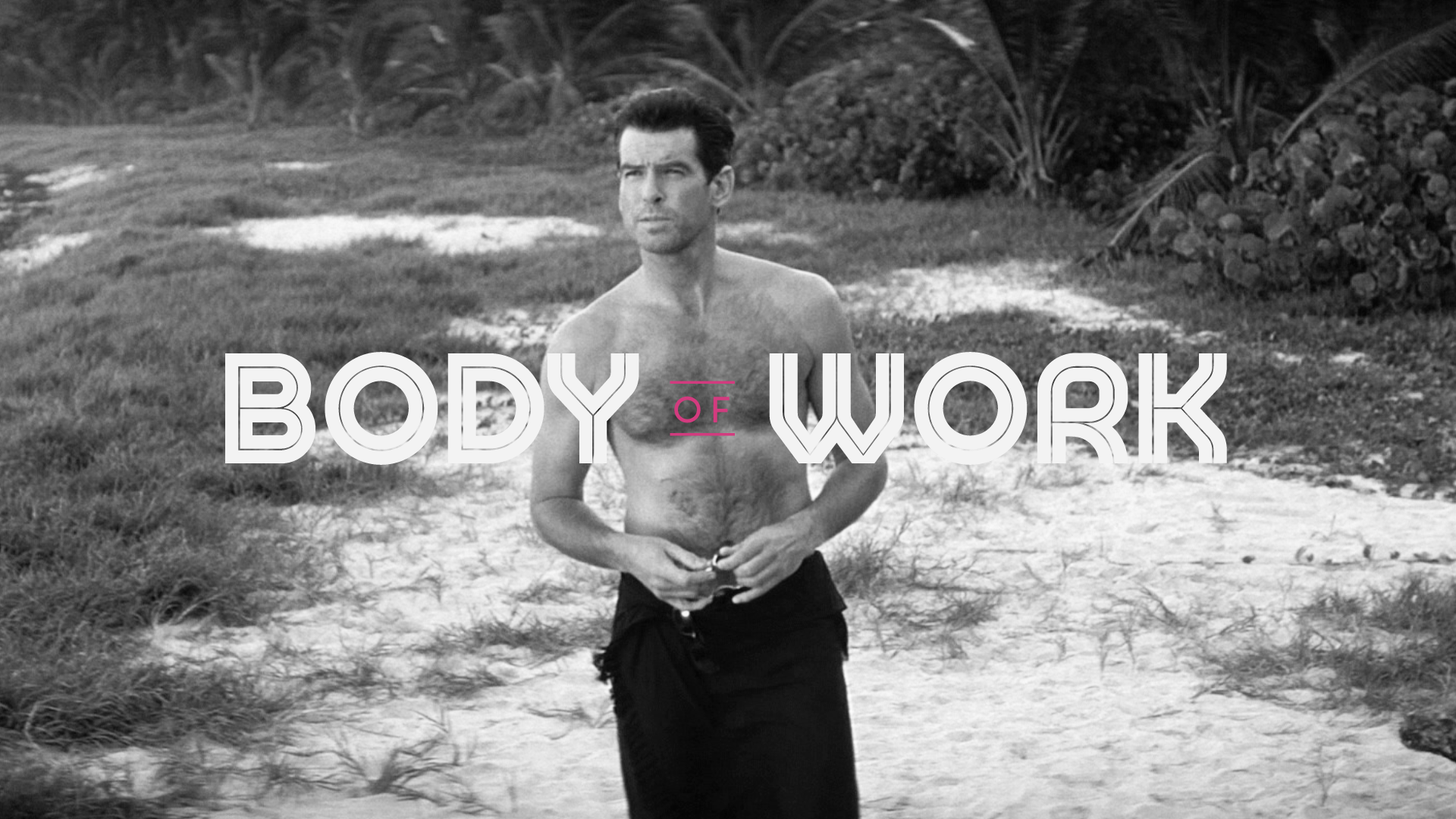 Body Of Work: Pierce Brosnan