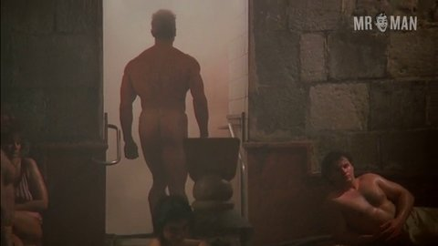 Redheat schwarzenegger hd 01 large 3