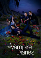 The vampire diaries 85b60f28 boxcover