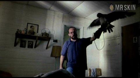 Hawk williams1 large 3