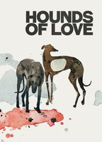 Hounds of love 8158e772 boxcover