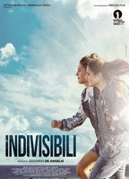 Indivisible 5ed68dfb boxcover